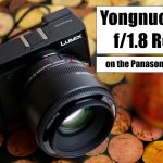 Yongnuo 50mm f/1.8 (Canon EF) on Panasonic MFT with Viltrox EF-M2